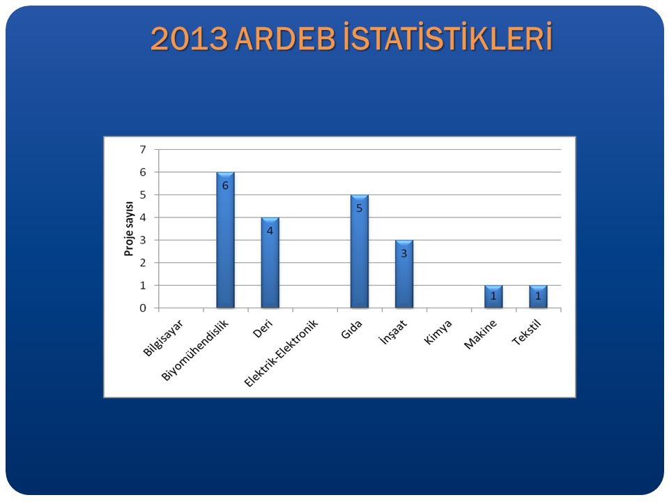 2013 ARDEB İSTATİSTİKLERİ
