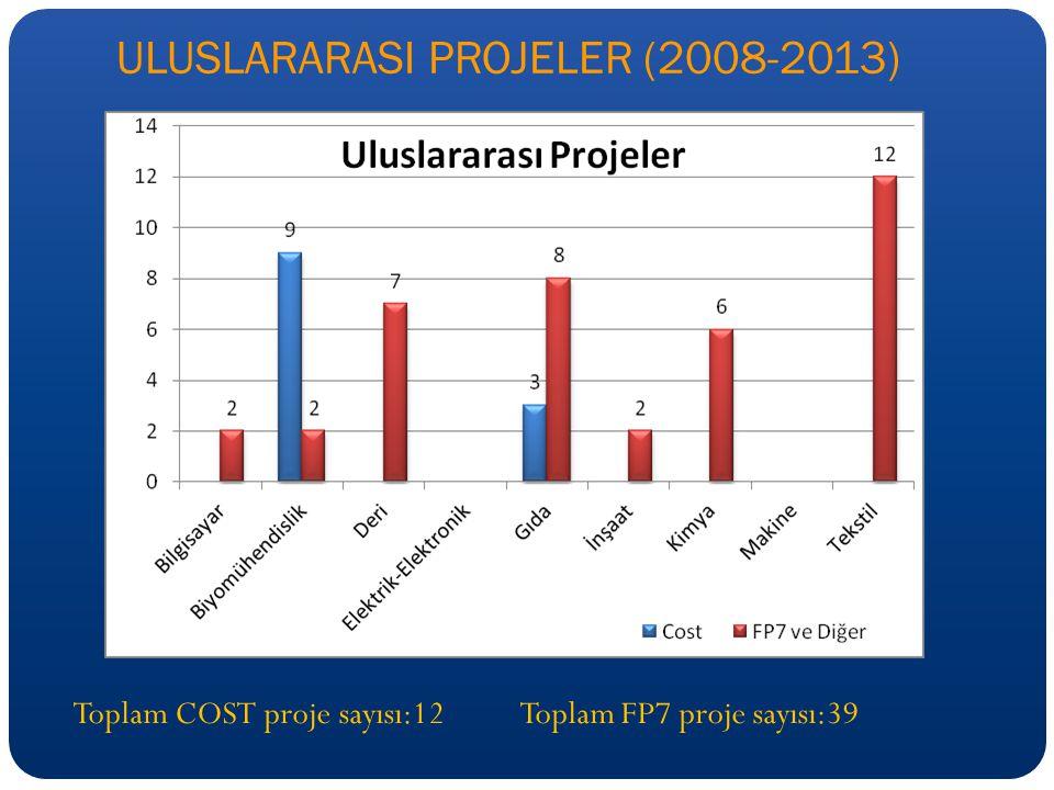 ULUSLARARASI PROJELER (2008-2013)