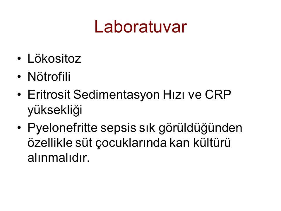 Laboratuvar Lökositoz Nötrofili