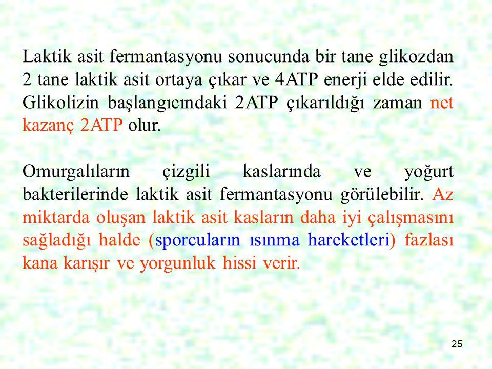 Laktik asit fermantasyonu sonucunda bir tane glikozdan 2 tane laktik asit ortaya çıkar ve 4ATP enerji elde edilir. Glikolizin başlangıcındaki 2ATP çıkarıldığı zaman net kazanç 2ATP olur.