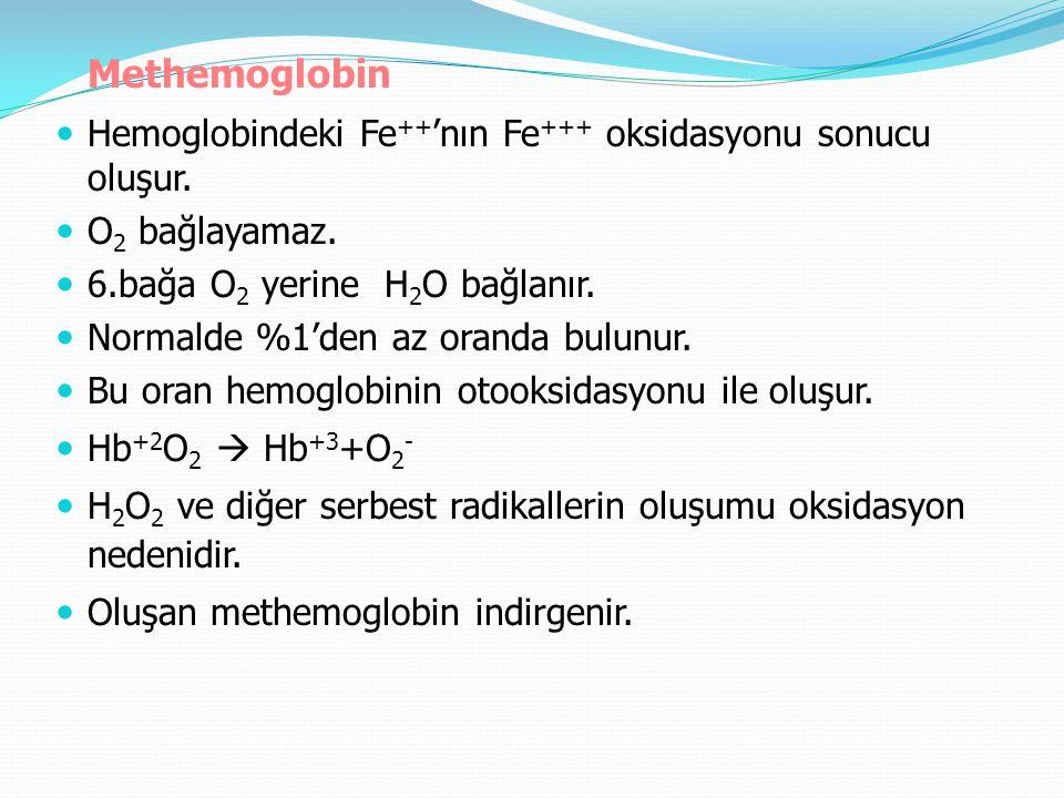 Hemoglobindeki Fe++'nın Fe+++ oksidasyonu sonucu oluşur.
