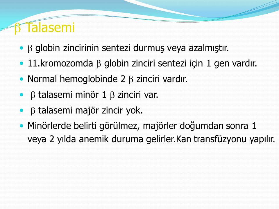 b Talasemi b globin zincirinin sentezi durmuş veya azalmıştır.
