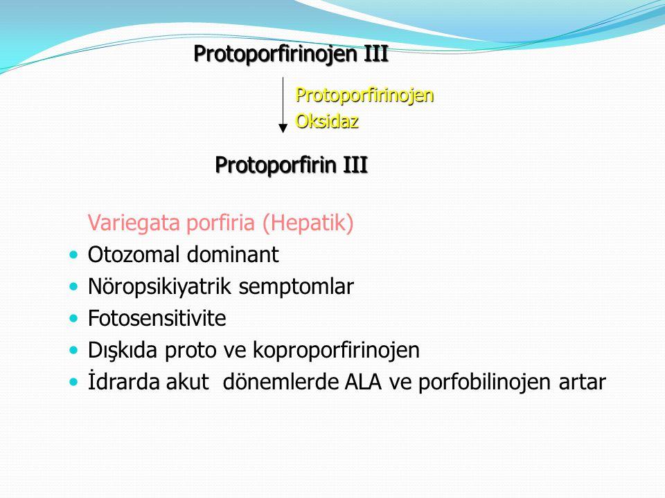 Protoporfirinojen III