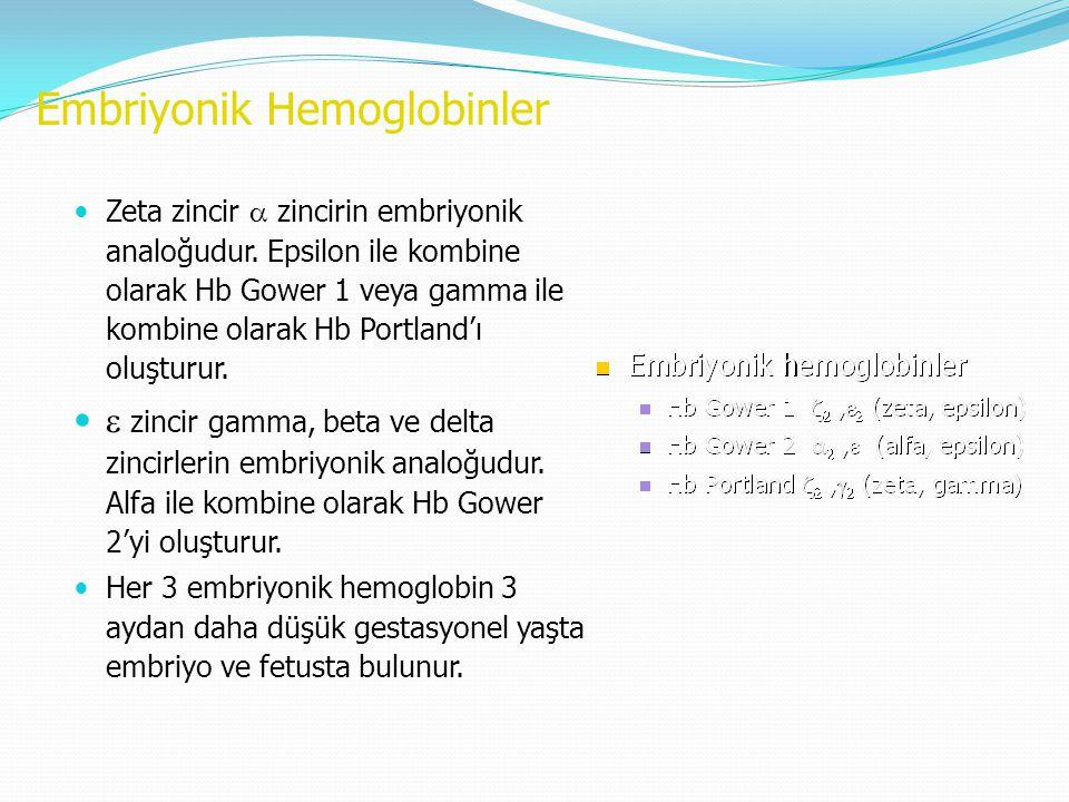 Embriyonik Hemoglobinler