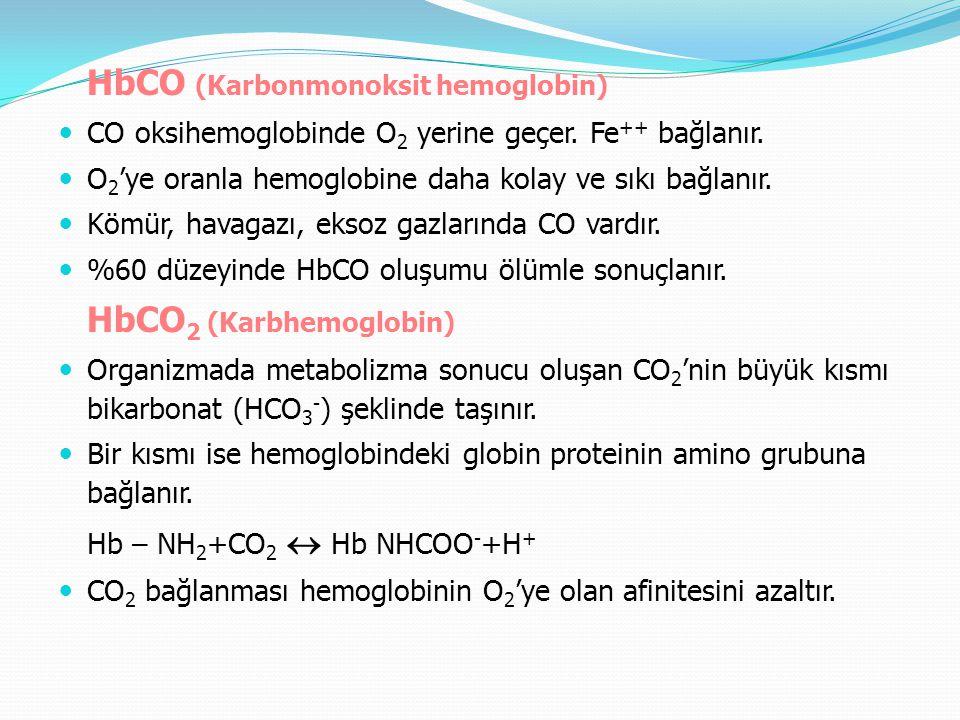 HbCO (Karbonmonoksit hemoglobin)