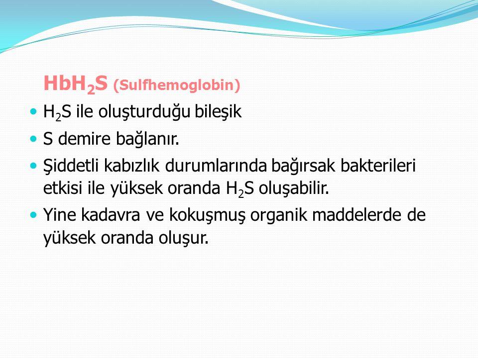 HbH2S (Sulfhemoglobin)