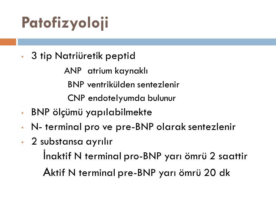 Patofizyoloji 3 tip Natriüretik peptid ANP atrium kaynaklı