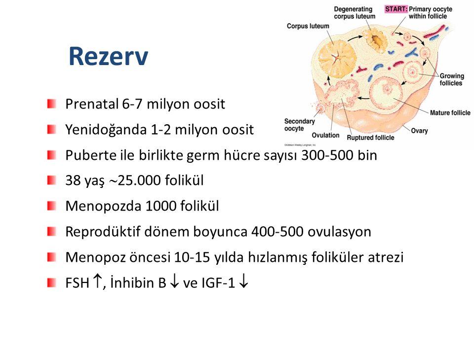 Rezerv Prenatal 6-7 milyon oosit Yenidoğanda 1-2 milyon oosit
