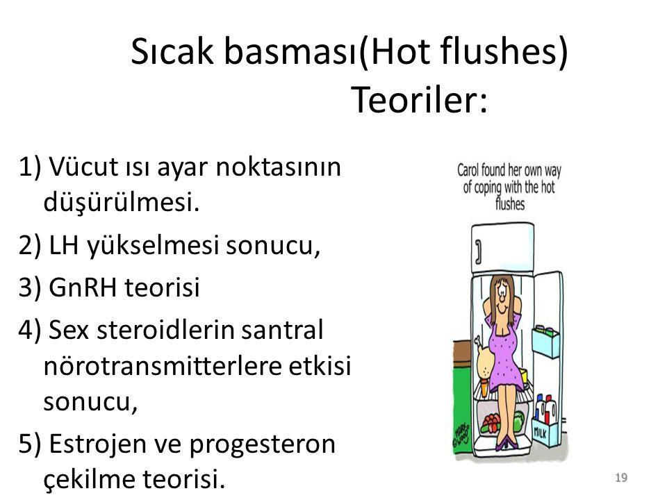 Sıcak basması(Hot flushes) Teoriler: