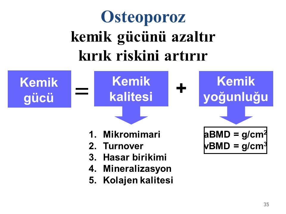 Osteoporoz kemik gücünü azaltır kırık riskini artırır