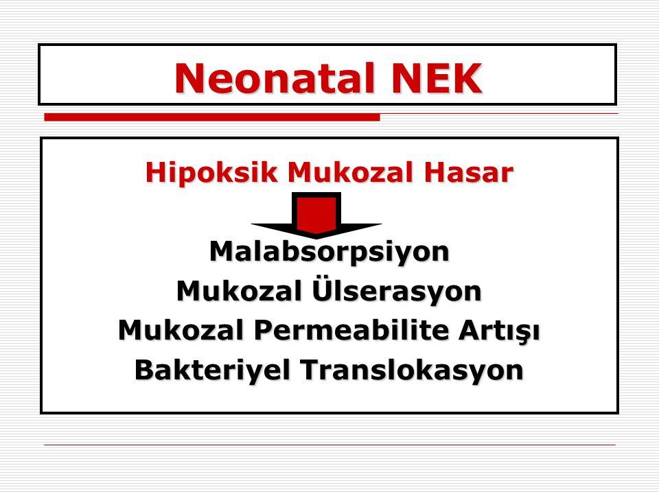 Neonatal NEK Hipoksik Mukozal Hasar Malabsorpsiyon Mukozal Ülserasyon