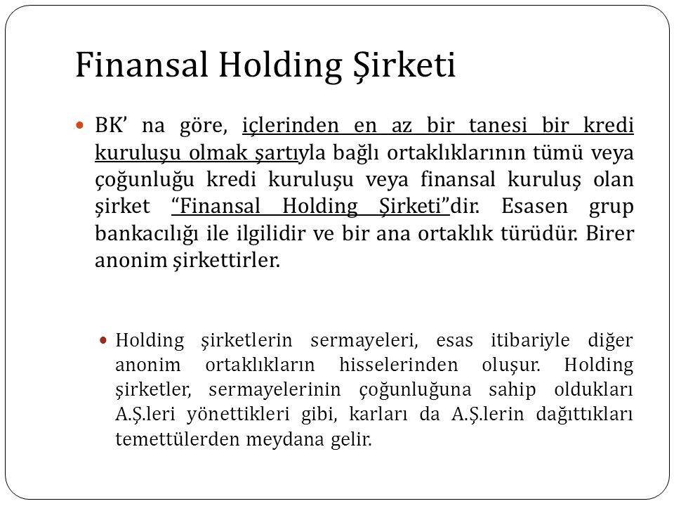 Finansal Holding Şirketi