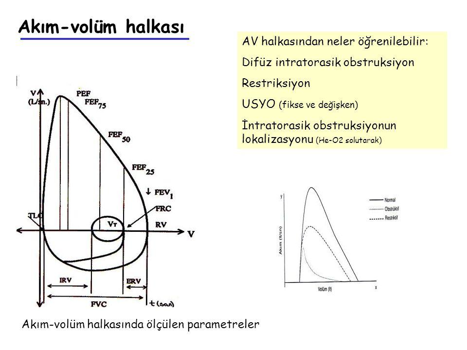 Akım-volüm halkası AV halkasından neler öğrenilebilir: