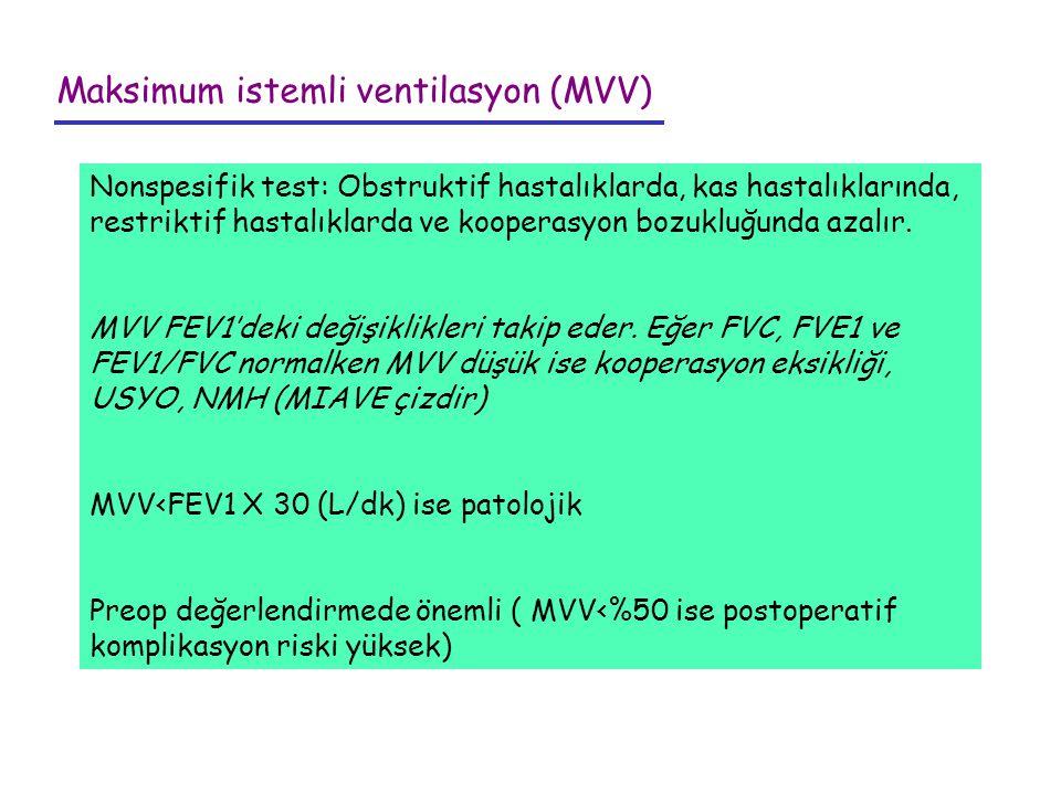 Maksimum istemli ventilasyon (MVV)