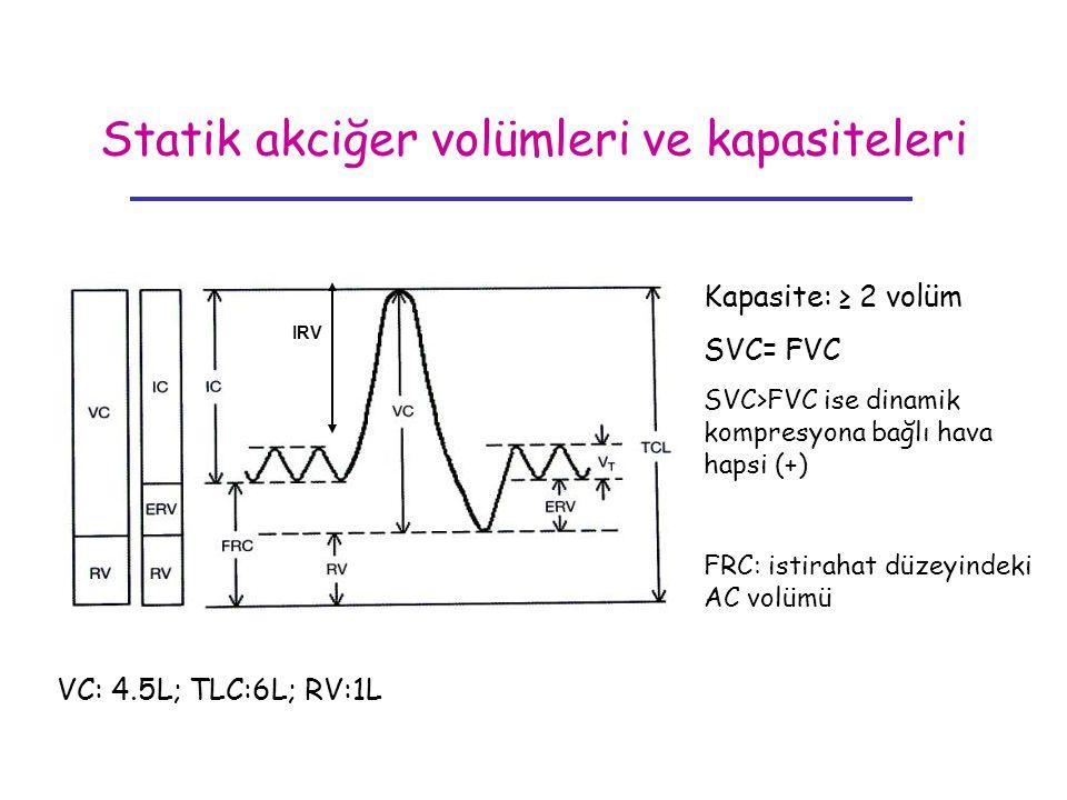 Statik akciğer volümleri ve kapasiteleri