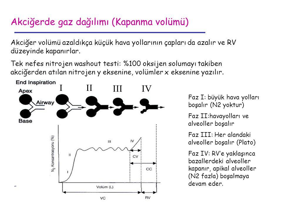 Akciğerde gaz dağılımı (Kapanma volümü)