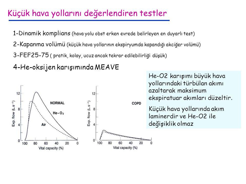 Küçük hava yollarını değerlendiren testler