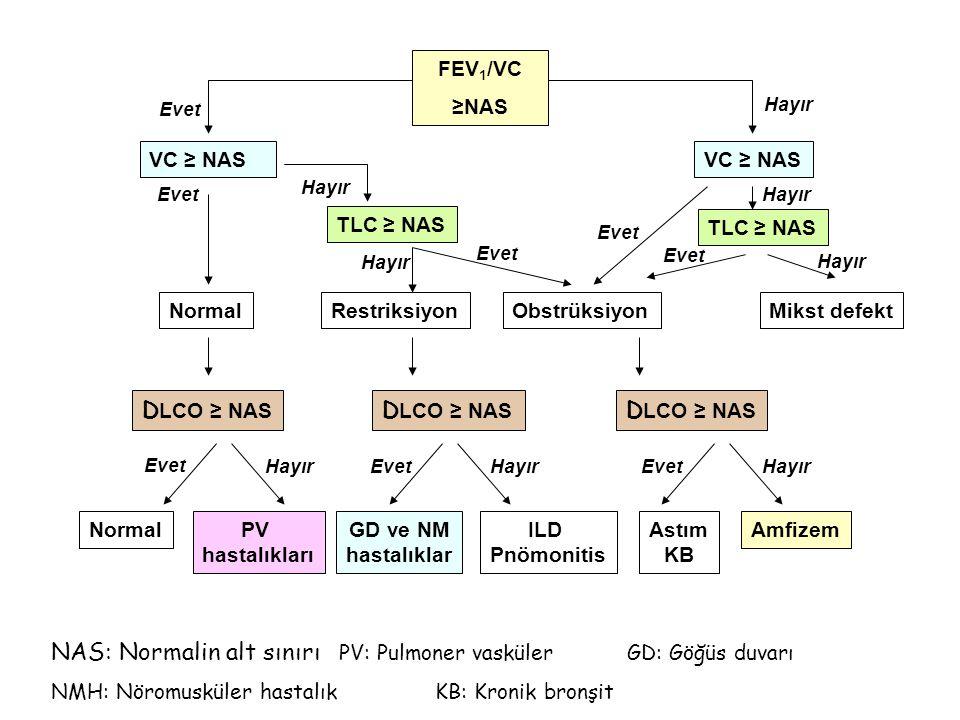 NAS: Normalin alt sınırı PV: Pulmoner vasküler GD: Göğüs duvarı