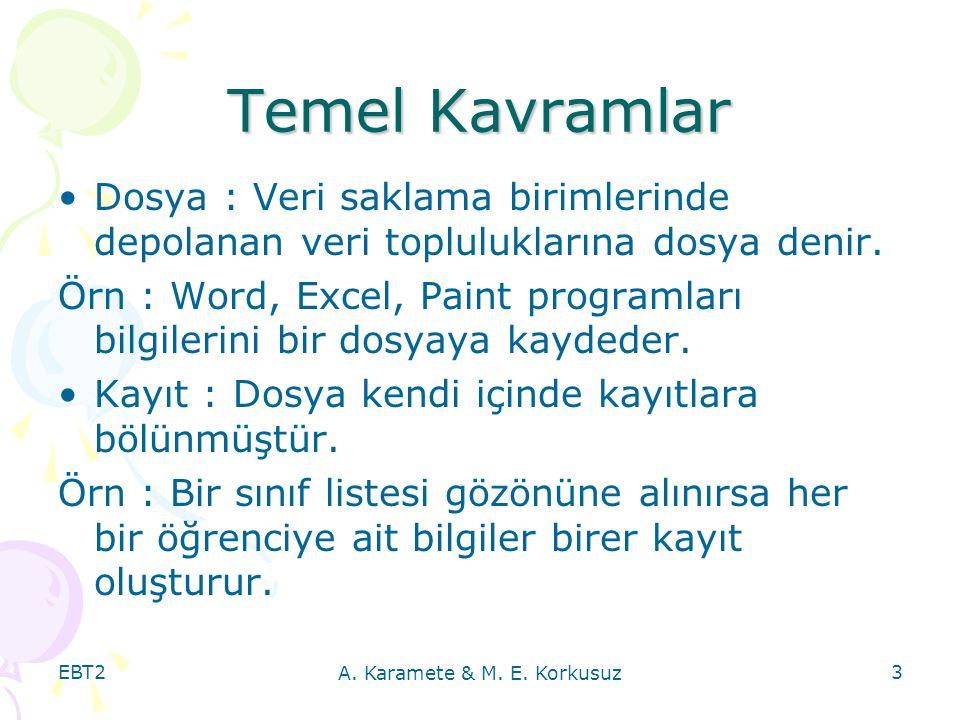 A. Karamete & M. E. Korkusuz