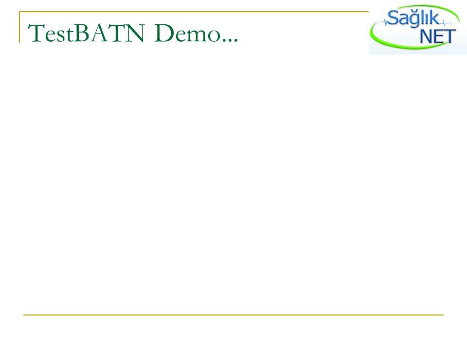 TestBATN Demo...