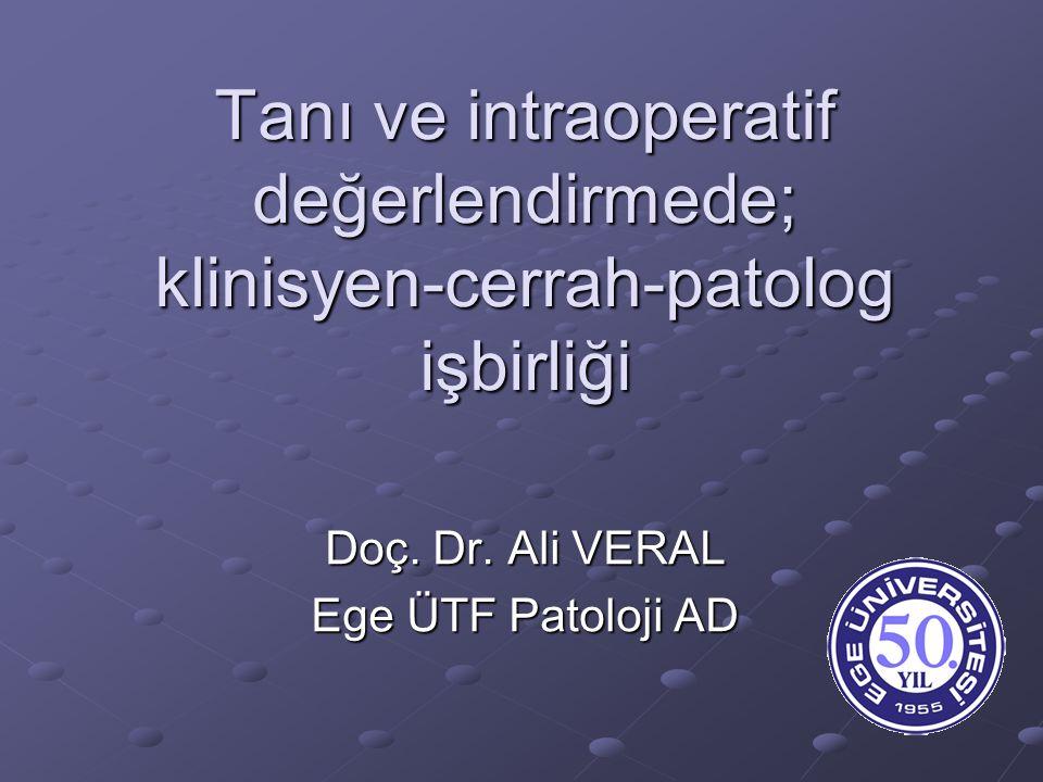 Doç. Dr. Ali VERAL Ege ÜTF Patoloji AD