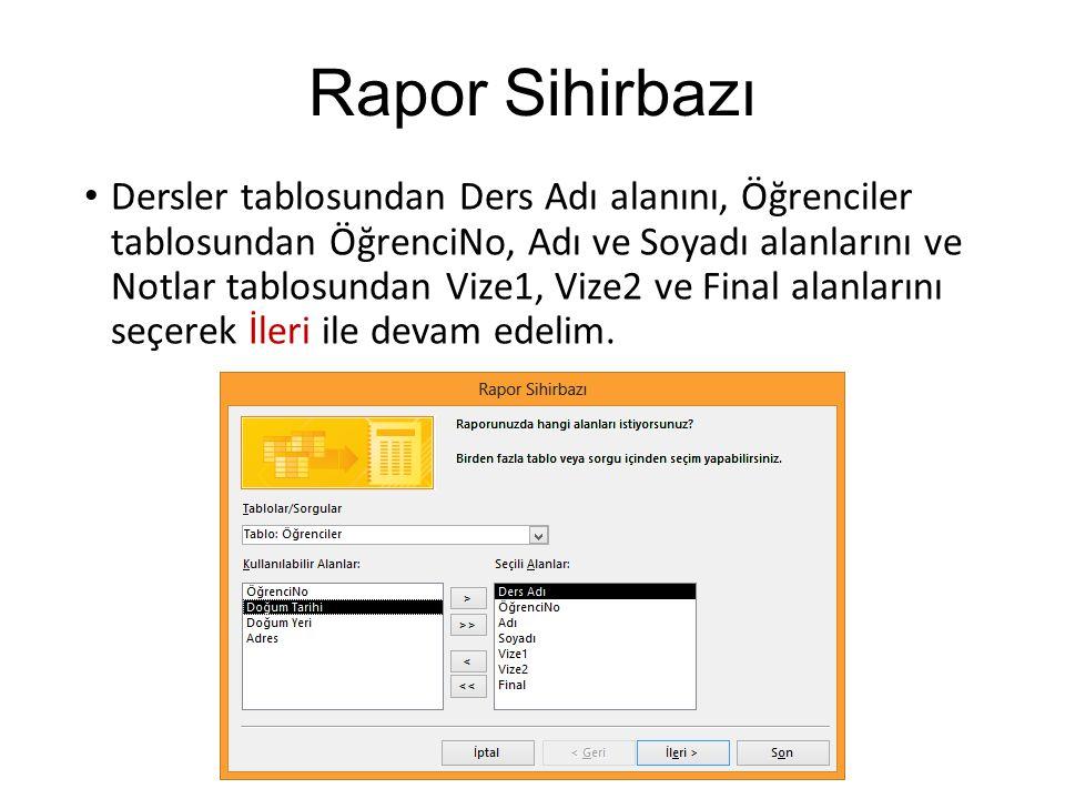 Rapor Sihirbazı