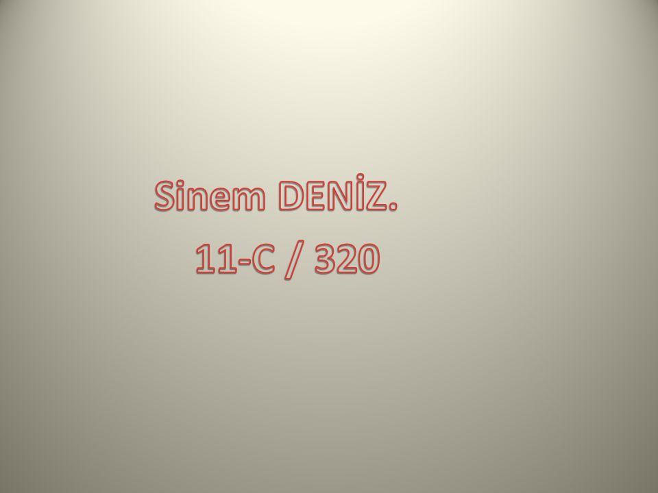 Sinem DENİZ. 11-C / 320