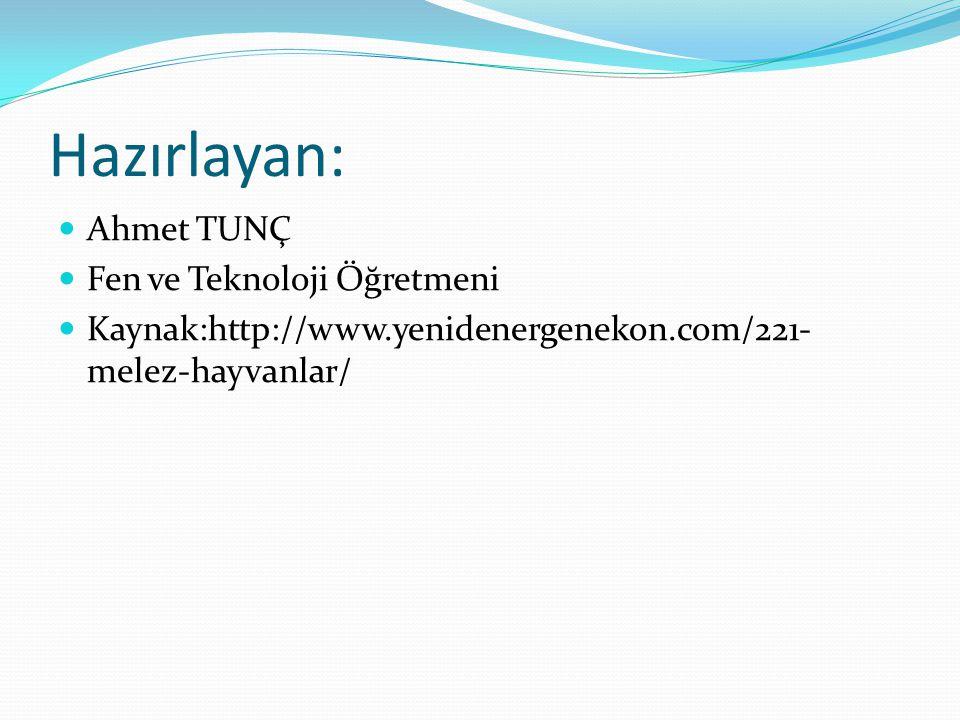 Hazırlayan: Ahmet TUNÇ Fen ve Teknoloji Öğretmeni
