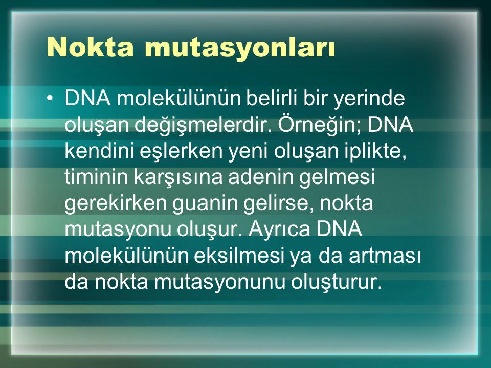 Nokta mutasyonları