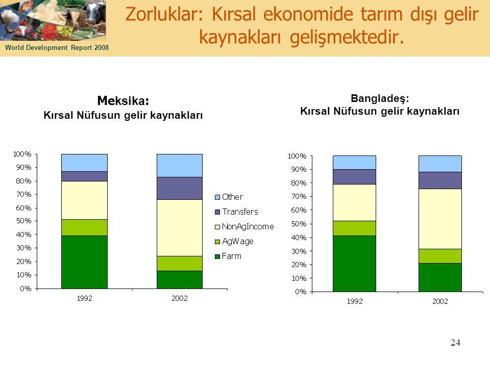 Zorluklar: Kırsal ekonomide tarım dışı gelir kaynakları gelişmektedir.