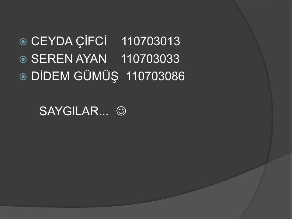 CEYDA ÇİFCİ 110703013 SEREN AYAN 110703033 DİDEM GÜMÜŞ 110703086 SAYGILAR... 
