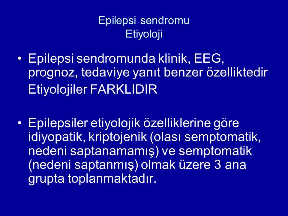 Epilepsi sendromu Etiyoloji