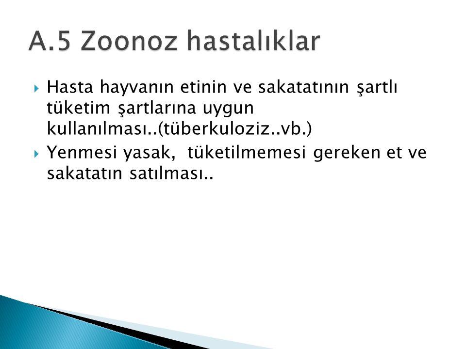 A.5 Zoonoz hastalıklar Hasta hayvanın etinin ve sakatatının şartlı tüketim şartlarına uygun kullanılması..(tüberkuloziz..vb.)