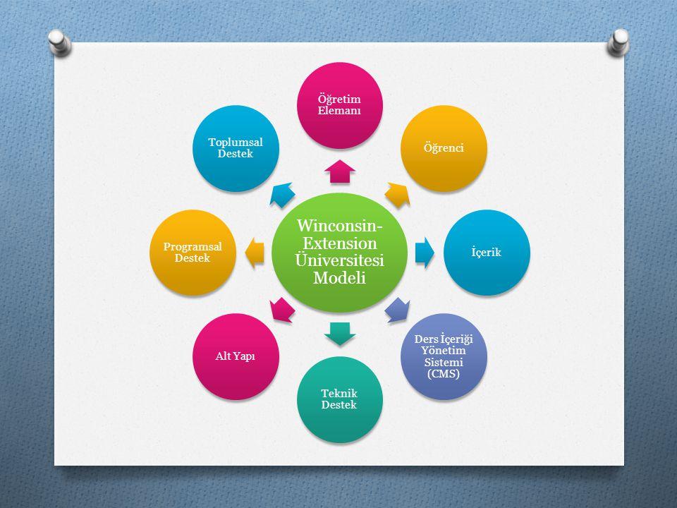 Winconsin-Extension Üniversitesi Modeli