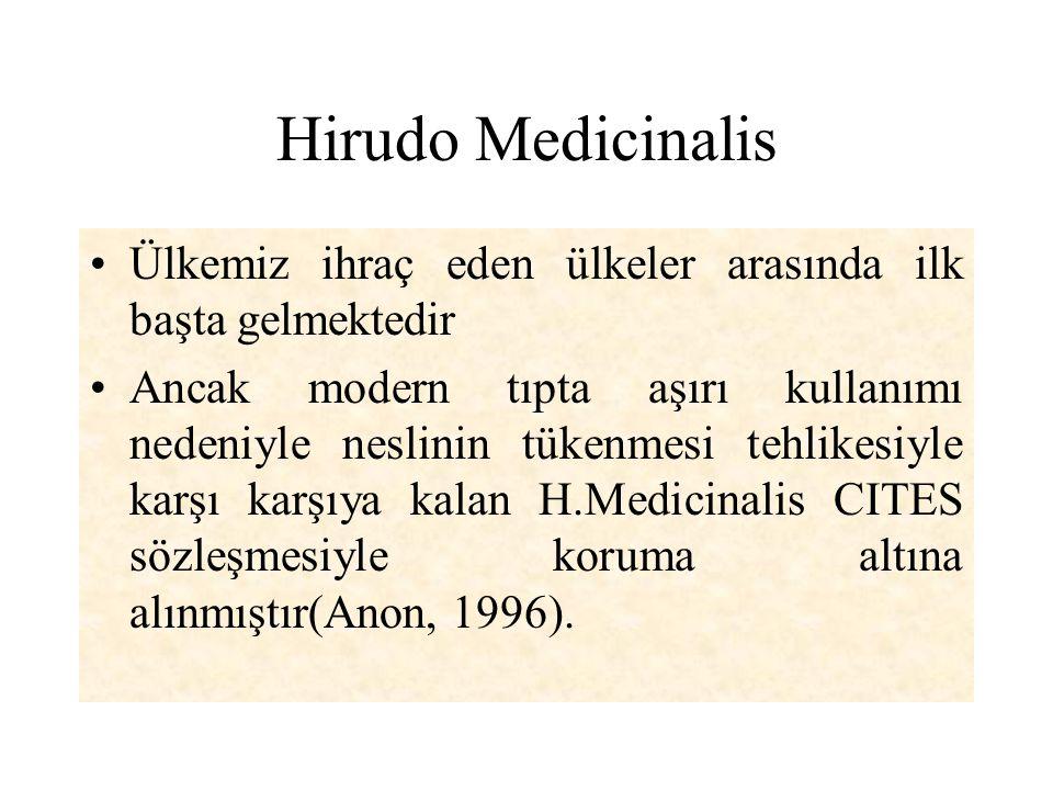 Hirudo Medicinalis Ülkemiz ihraç eden ülkeler arasında ilk başta gelmektedir.