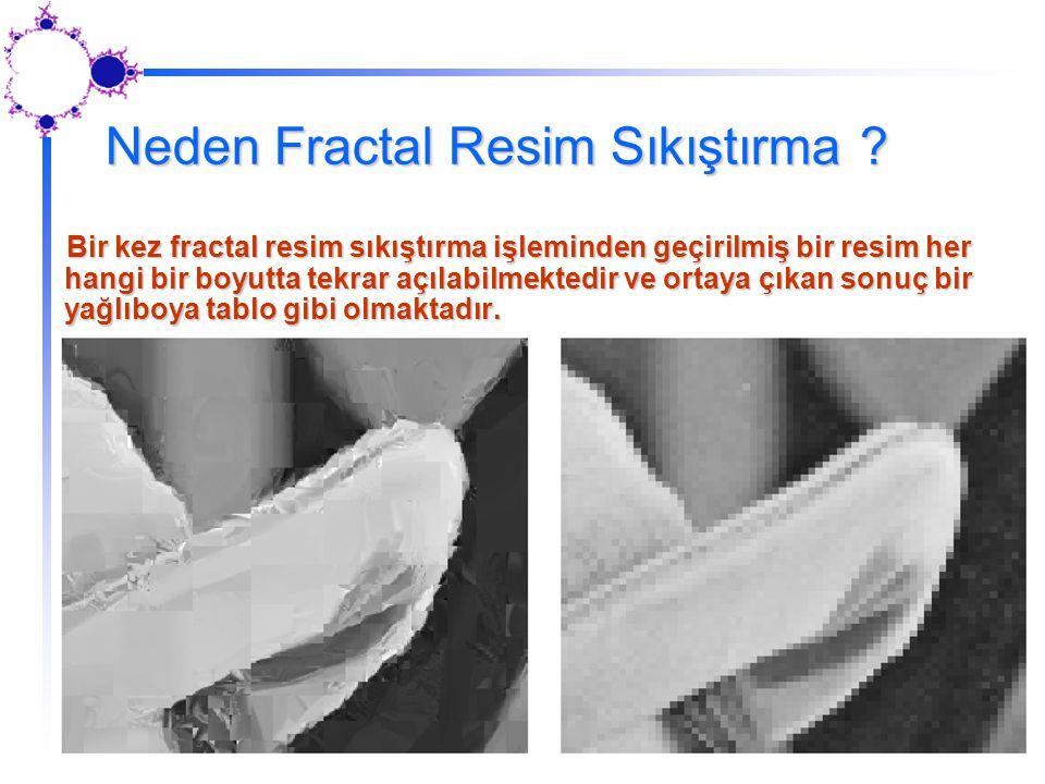 Neden Fractal Resim Sıkıştırma