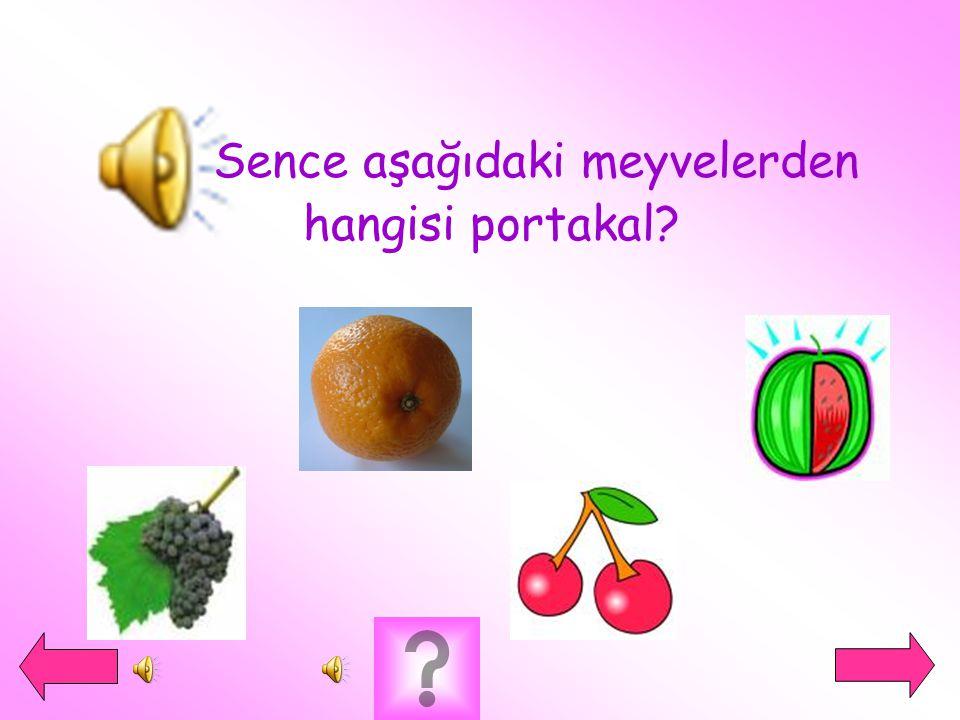  Sence aşağıdaki meyvelerden hangisi portakal