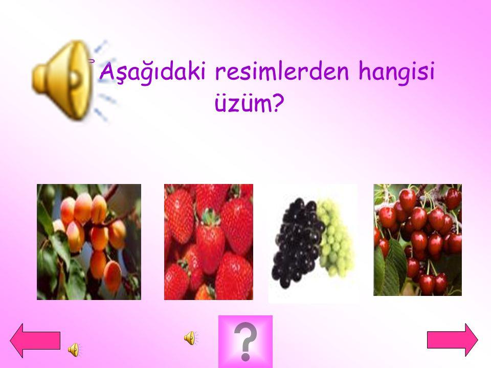 Aşağıdaki resimlerden hangisi üzüm