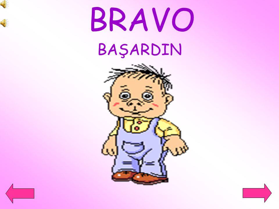 BRAVO BAŞARDIN
