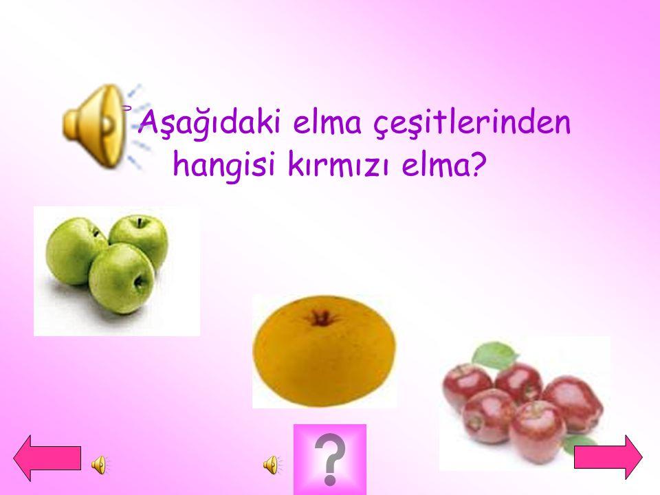 Aşağıdaki elma çeşitlerinden hangisi kırmızı elma