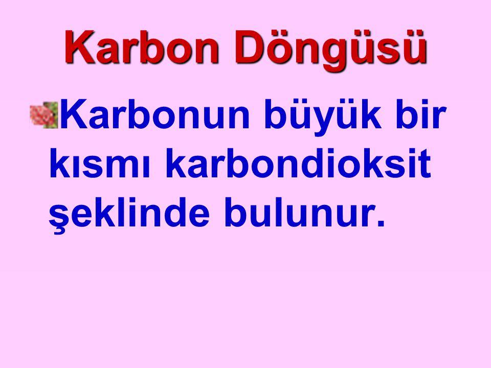 Karbon Döngüsü Karbonun büyük bir kısmı karbondioksit şeklinde bulunur.
