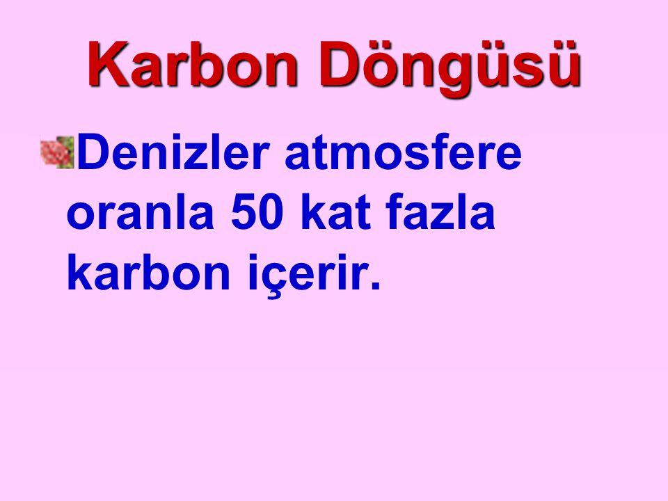 Karbon Döngüsü Denizler atmosfere oranla 50 kat fazla karbon içerir.