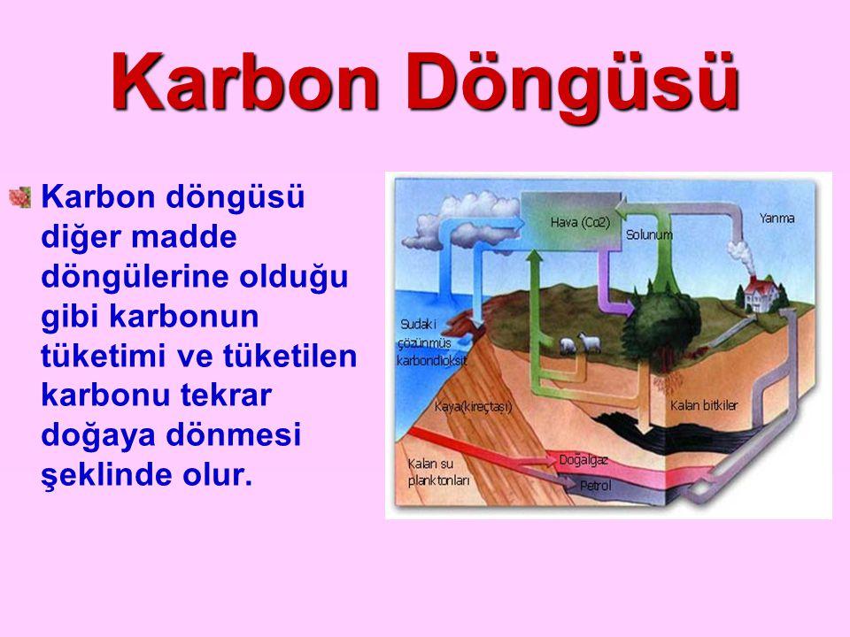 Karbon Döngüsü Karbon döngüsü diğer madde döngülerine olduğu gibi karbonun tüketimi ve tüketilen karbonu tekrar doğaya dönmesi şeklinde olur.