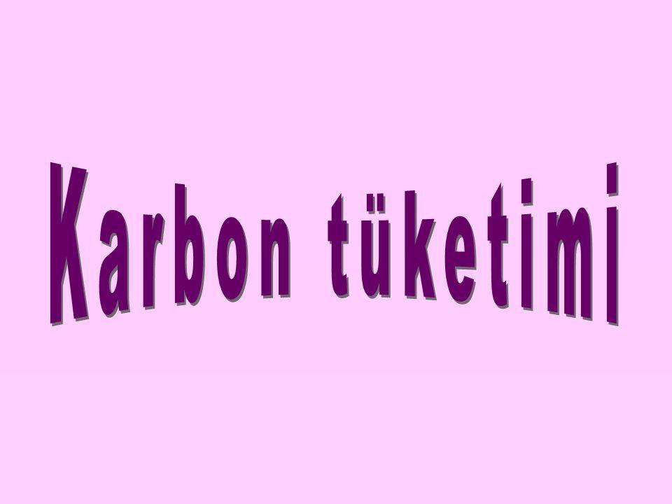 Karbon tüketimi