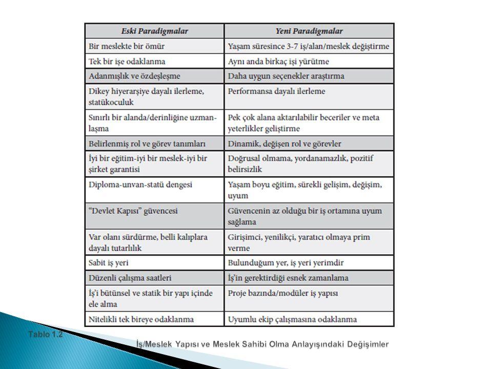 Tablo 1.2 İş/Meslek Yapısı ve Meslek Sahibi Olma Anlayışındaki Değişimler
