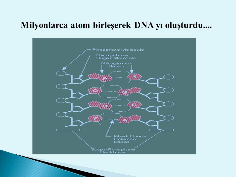 Milyonlarca atom birleşerek DNA yı oluşturdu....