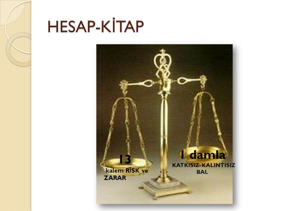 HESAP-KİTAP 1 damla KATKISIZ- KALINTISIZ BAL 13 kalem RİSK ve ZARAR