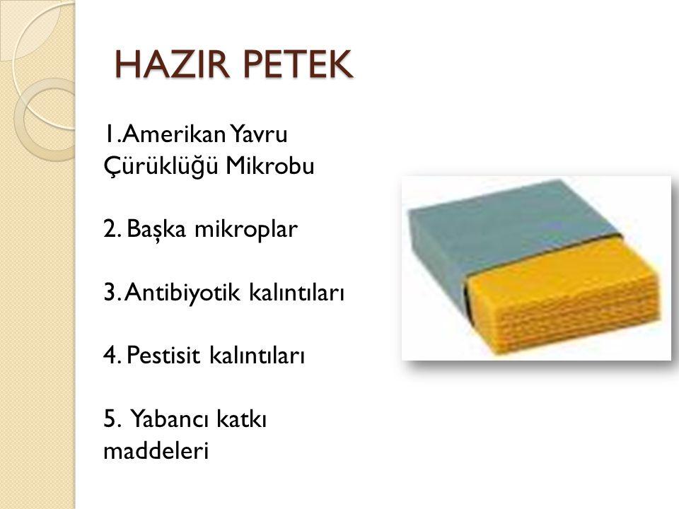 HAZIR PETEK 1.Amerikan Yavru Çürüklüğü Mikrobu 2. Başka mikroplar