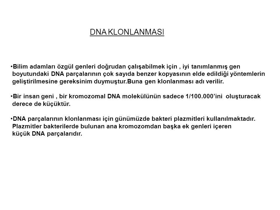 DNA KLONLANMASI Bilim adamları özgül genleri doğrudan çalışabilmek için , iyi tanımlanmış gen.