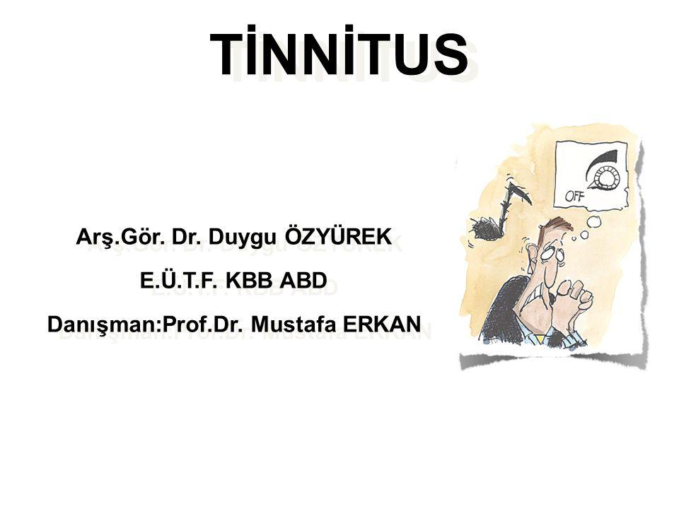 Arş.Gör. Dr. Duygu ÖZYÜREK Danışman:Prof.Dr. Mustafa ERKAN
